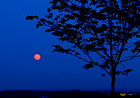 Red Super Moon