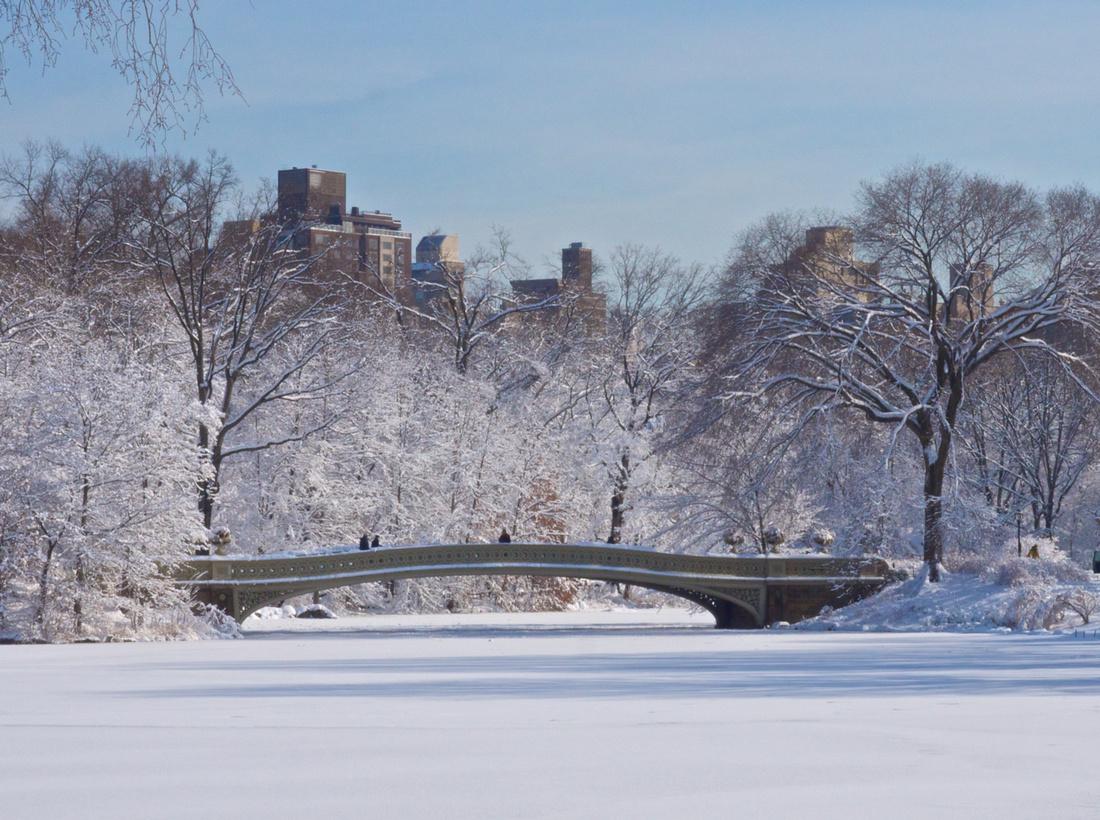 Winter Feb. 40mm