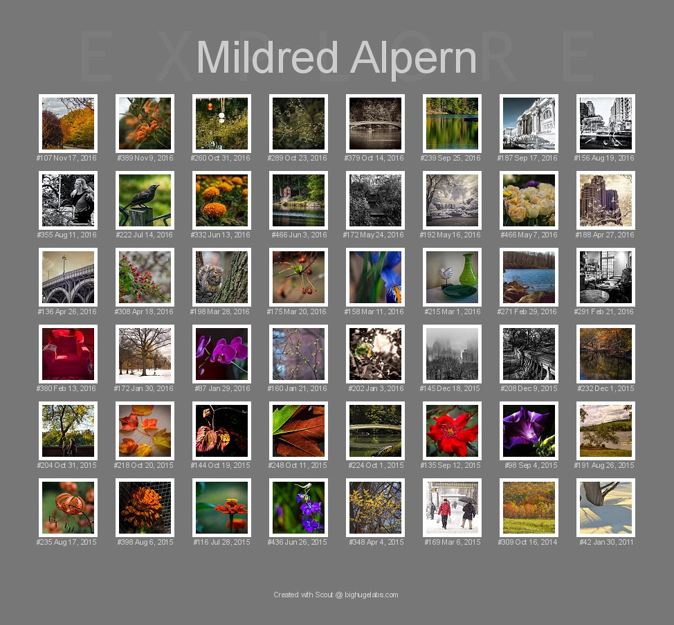 Flickr Explore Recognition