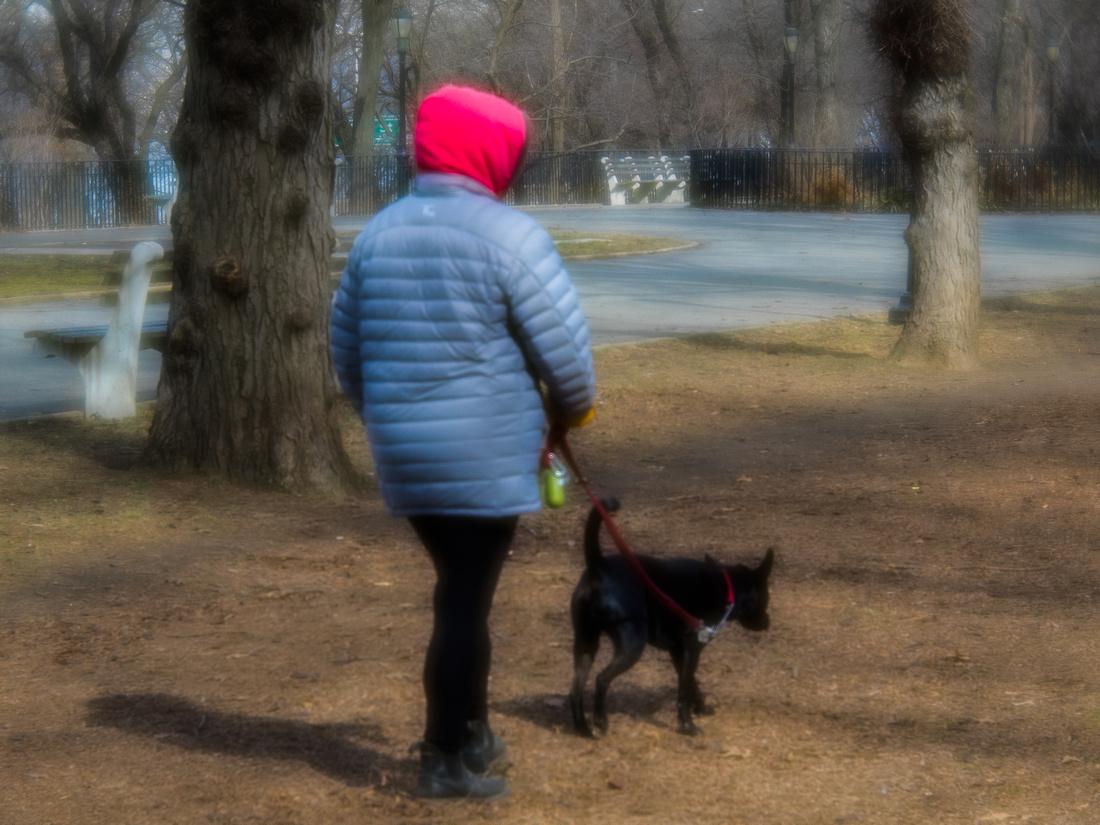 February walker