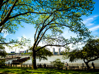 _Benches by the Hudson